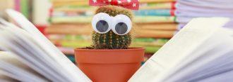 cactus-1063094_1920